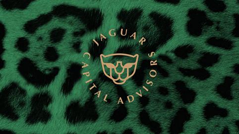 обложка Jaguar